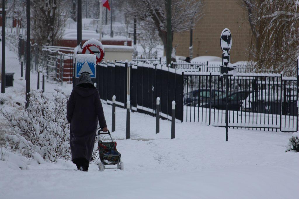 Femme neige Les Mureaux