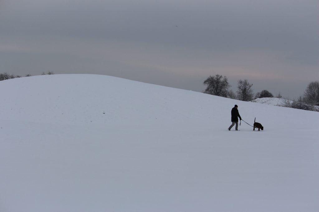 Homme chien neige Les Mureaux