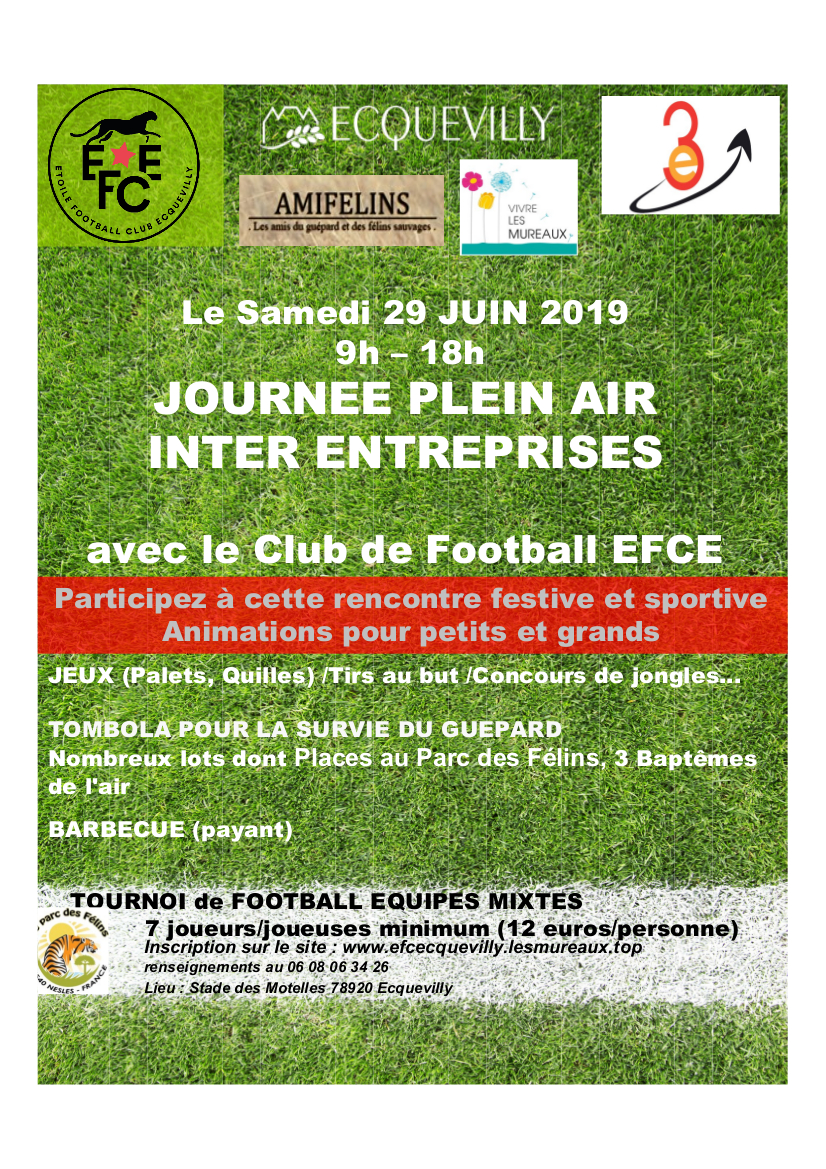 affiche tournoi 29 juin 2019 EFCE Ecquevilly